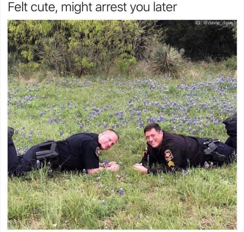 "Meme - ""Felt cute, might arrest you later"""