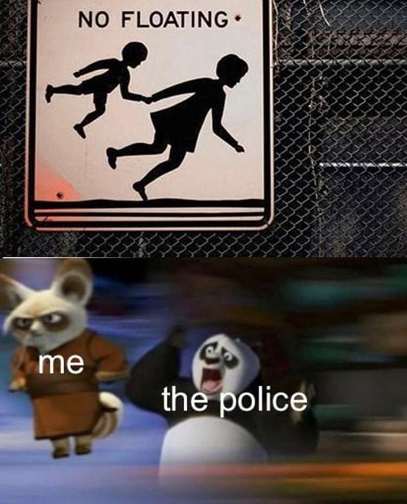 Meme - Skateboarding - NO FLOATING me the police