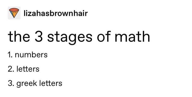 Meme - Text - lizahasbrownhair the 3 stages of math 1. numbers 2. letters 3. greek letters
