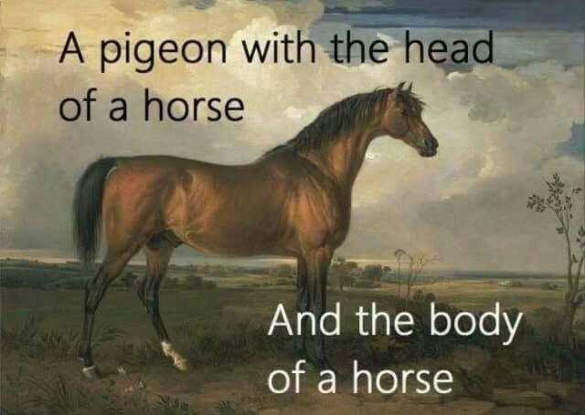 Meme - Horse - A pigeon with the head of a horse And the body of a horse