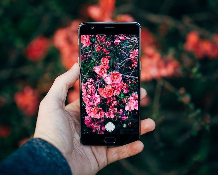 nature app - Hand - HOR
