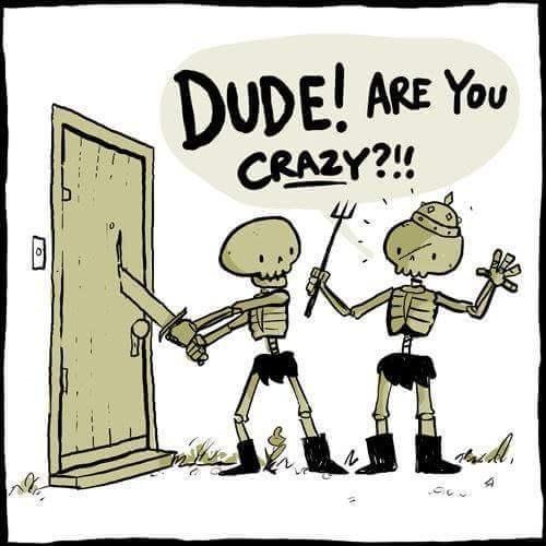 Cartoon - DUDE! ARE YoU CRAZY?!