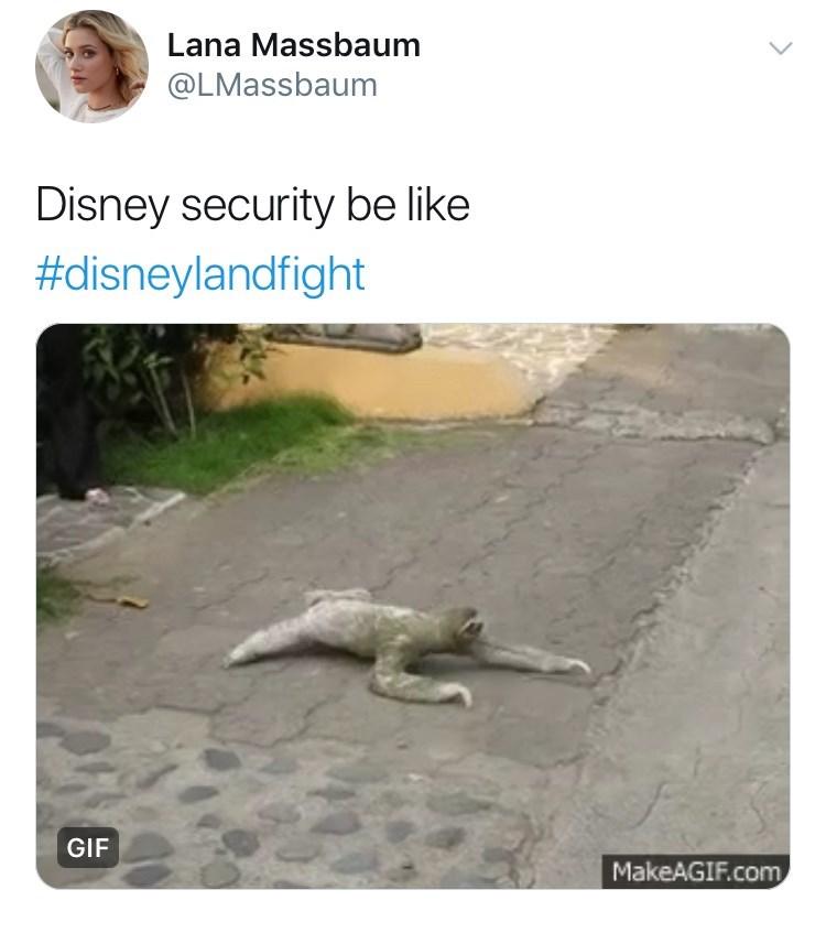 disneyland family fight - Varanidae - Lana Massbaum @LMassbaum Disney security be like #disneylandfight GIF MakeAGIF.com