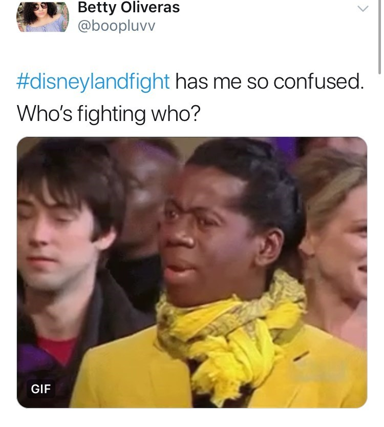 disneyland family fight - Human - Betty Oliveras @boopluvv #disneylandfight has me so confused. Who's fighting who? GIF