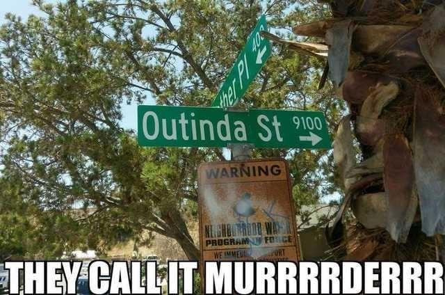 Meme - Nature - Outinda St 9100 WARNING PROGRAM WE IMMED THEY CALLIT MURRRRDERRR