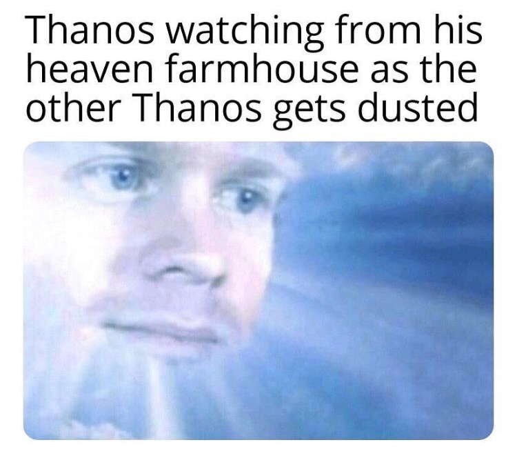 marvel meme - Text - Thanos watching from his heaven farmhouse as the other Thanos gets dusted