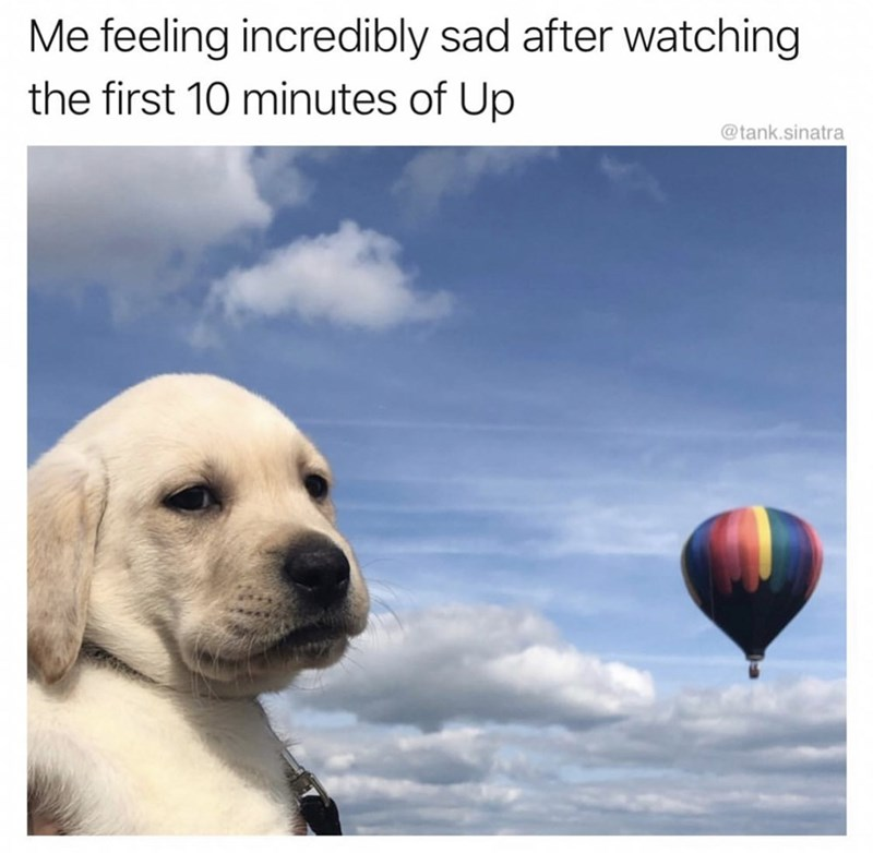 meme - Sky - Me feeling incredibly sad after watching the first 10 minutes of Up @tank.sinatra