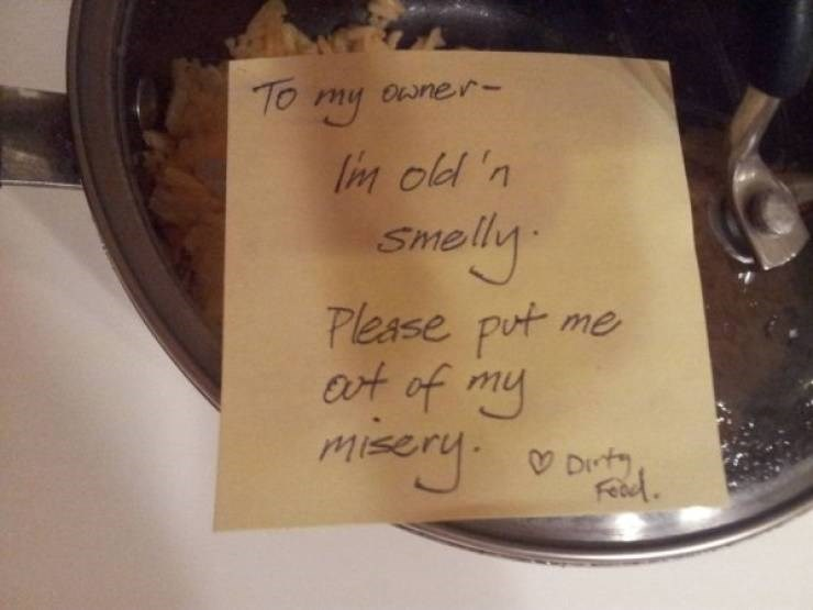 bad roommate - Text - TO my Owner- lim old 'n Smelly Please put me at of my Misery. Dt FRud