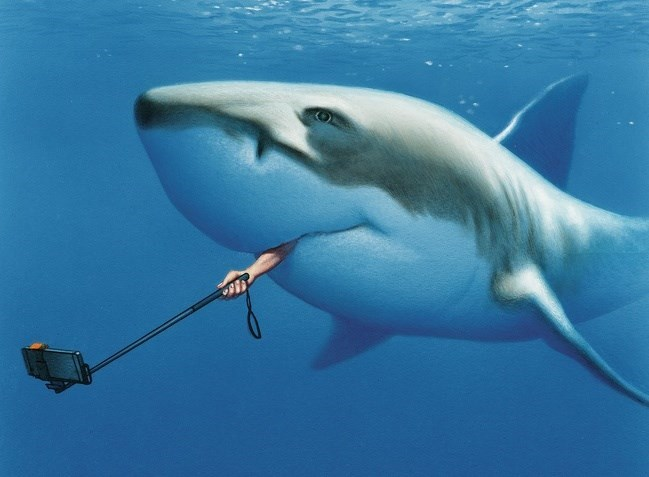 Funny photoshopped picture of a shark taking a selfie with a selfie stick