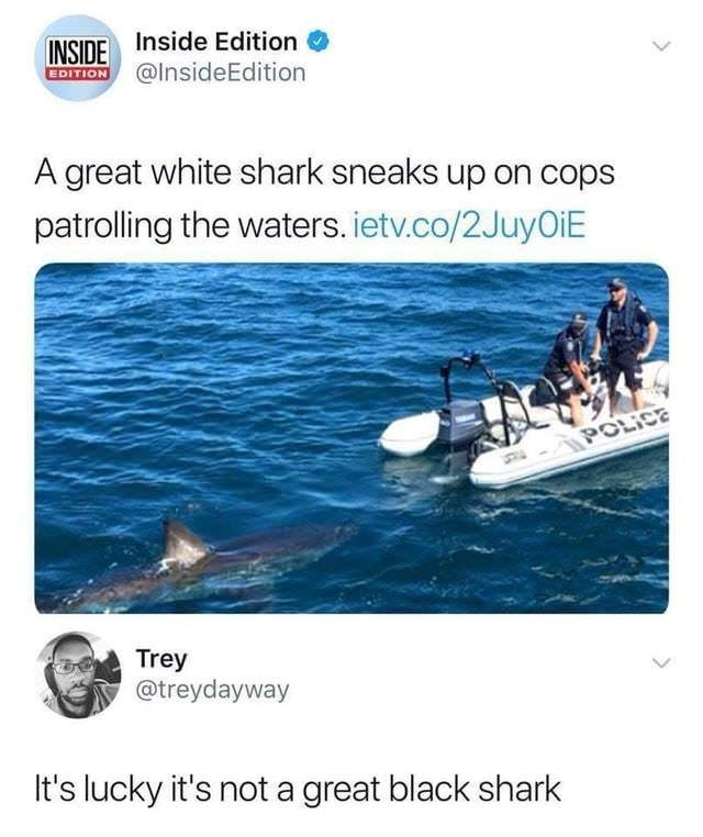 """Twitter meme that reads, """"A great white shark sneaks up on cops patrolling the waters;"""" someone comments below, """"It's lucky it's not a great black shark"""""""