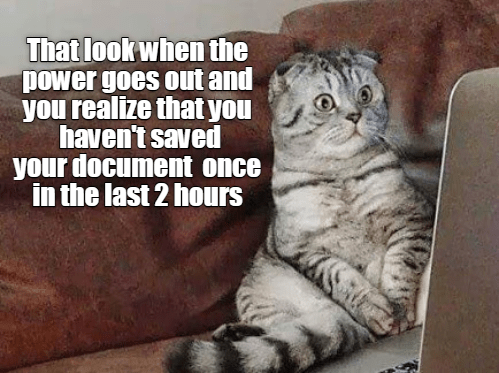 funny cat - Cat - That look when the power goes out and you realize that you haven't saved your document once in the last 2 hours