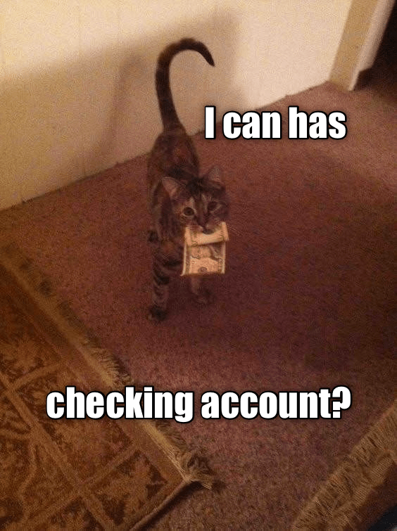 funny cat - Cat - I can has checking account?