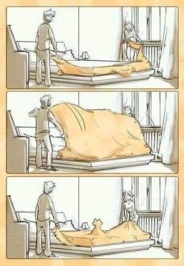 comic of people replacing sheets on a bed and finding out the cat got under