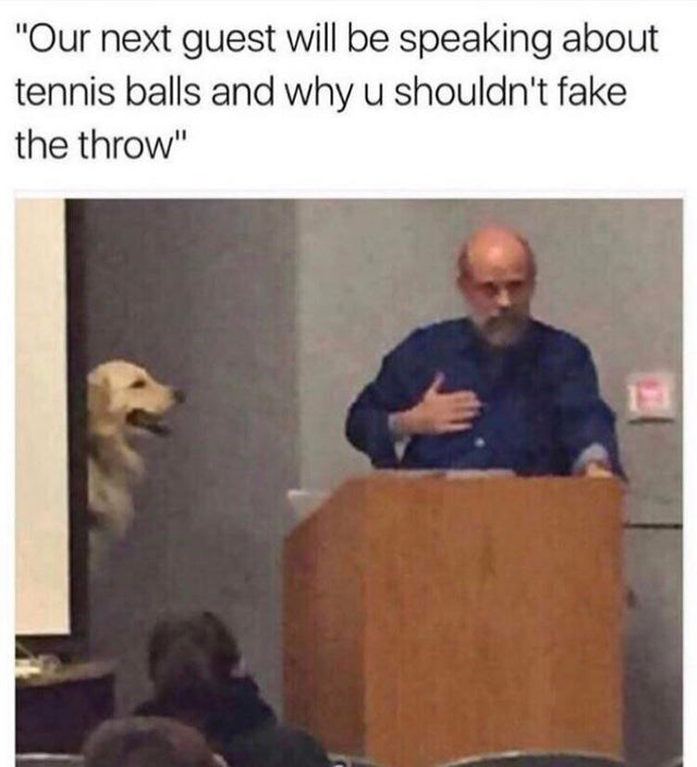 """Lecture - """"Our next guest will be speaking about tennis balls and why u shouldn't fake the throw"""""""