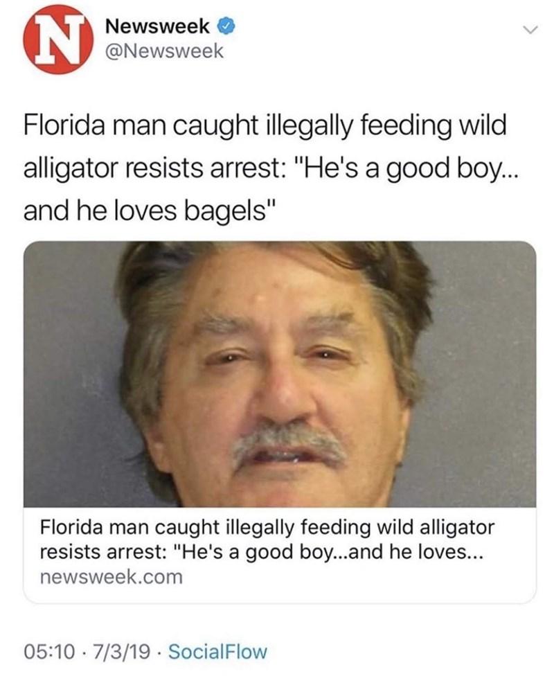 "funny tweet - Face - Newsweek @Newsweek Florida man caught illegally feeding wild alligator resists arrest: ""He's a good boy... and he loves bagels"" Florida man caught illegally feeding wild alligator resists arrest: ""He's a good boy...and he loves.. newsweek.com 05:10 7/3/19 SocialFlow"