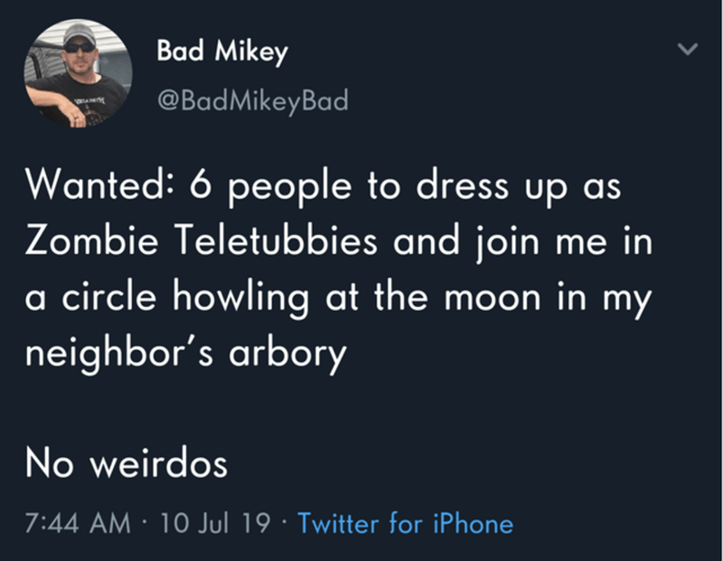 funny tweet - Text - Bad Mikey @BadMikeyBad Wanted: 6 people to dress up as Zombie Teletubbies and join me in a circle howling at the moon in my neighbor's arbory No weirdos 7:44 AM 10 Jul 19 Twitter for iPhone