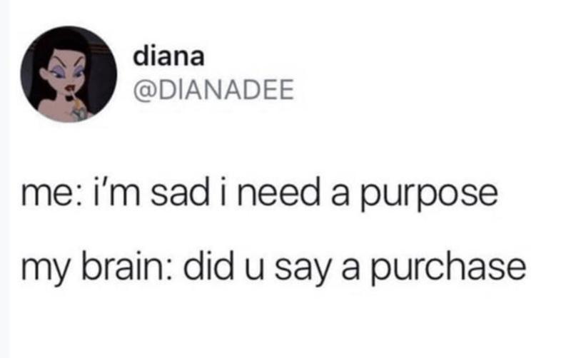 funny tweet - Text - diana @DIANADEE me: i'm sad i need a purpose my brain: did u say a purchase