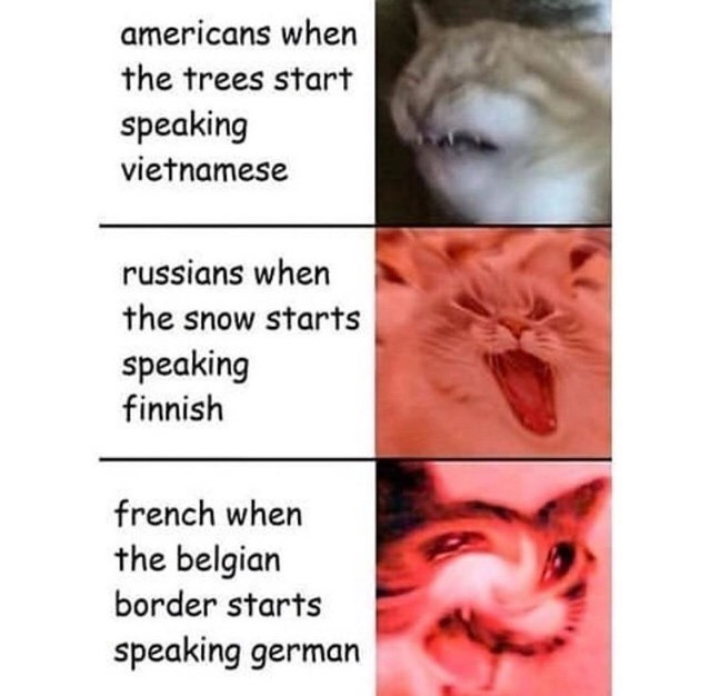 meme - Facial expression - americans when the trees start speaking vietnamese russians when the snow starts speaking finnish french when the belgian border starts speaking german
