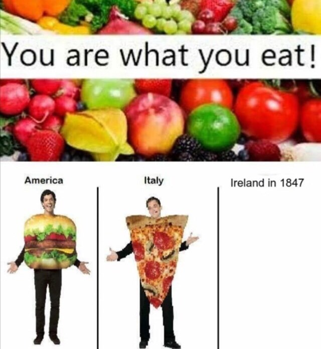meme - Natural foods - You are what you eat! Italy America Ireland in 1847