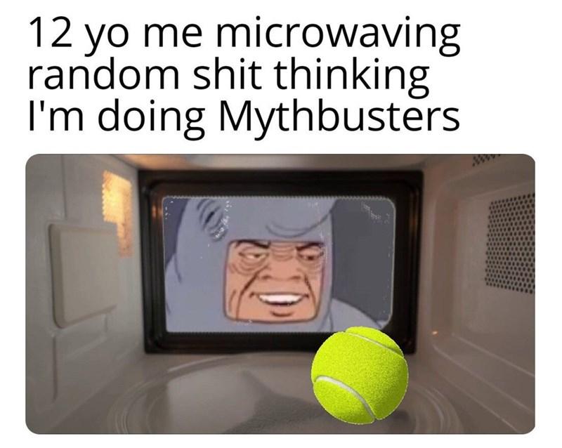meme - Text - 12 yo me microwaving random shit thinking I'm doing Mythbusters