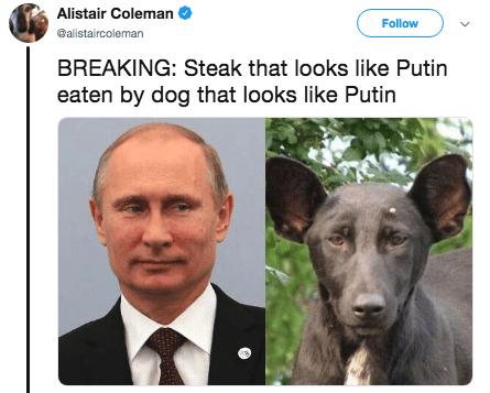putin steak - Nose - Alistair Coleman Follow @alistaircoleman BREAKING: Steak that looks like Putin eaten by dog that looks like Putin