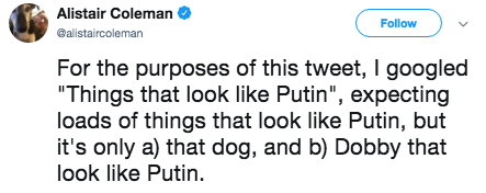 """putin steak - Text - Alistair Coleman Follow @alistaircoleman For the purposes of this tweet, I googled """"Things that look like Putin"""", expecting loads of things that look like Putin, but it's only a) that dog, and b) Dobby that look like Putin"""