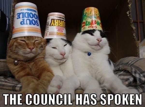 cat meme - Cat - THE COUNCIL HAS SPOKEN Colbee URRY SOUP OODLE