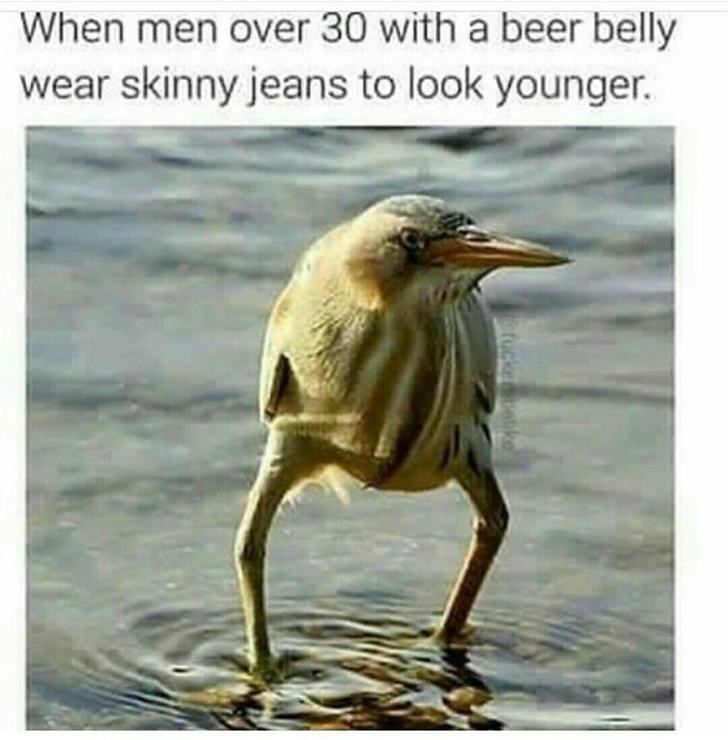 animal meme - Bird - When men over 30 with a beer belly wear skinny jeans to look younger. tocke bk
