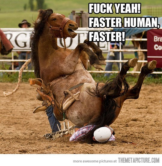 animal meme - Animal sports - FUCK YEAH! FASTER HUMAN, FASTER! G Bra Co more awesome pictures at THEMETAPICTURE.COM