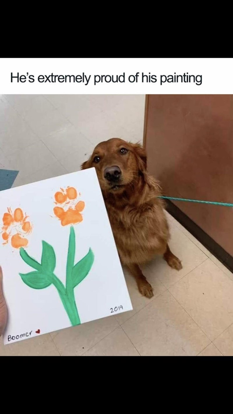 Meme - Dog - He's extremely proud of his painting 2019 Boomer