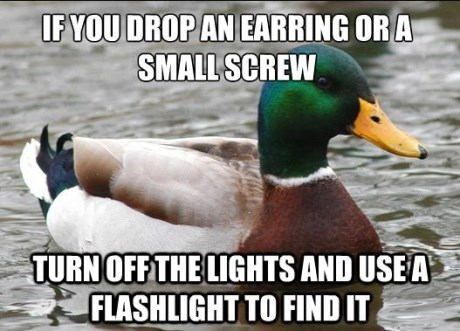 advice mallard - Bird - IFYOU DROP AN EARRING OR A SMALL SCREW TURNOFF THE LIGHTS AND USEA FLASHLIGHT TO FIND IT