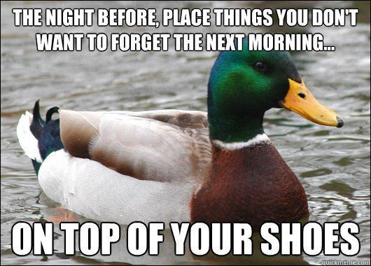 advice mallard - Bird - THE NIGHT BEFORE, PLACE THINGS YOUDONT WANT TO FORGET THE NEXT MORNING. ONTOP OF YOUR SHOES quickmeme.com