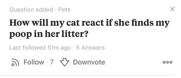 Text - Question added Pets X How will my cat react if she finds my poop in her litter? Last followed 51m ago 5 Answers Follow 7 Downvote