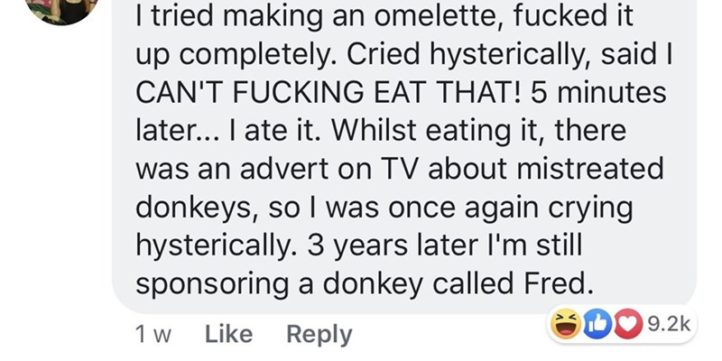 Women - Text - I tried making an omelette, fucked it up completely. Cried hysterically, said I CAN'T FUCKING EAT THAT! 5 minutes later.. I ate it. Whilst eating it, there was an advert on TV about mistreated donkeys, so I was once again crying hysterically. 3 years later I'm still sponsoring a donkey called Fred 9.2k Like Reply 1 w