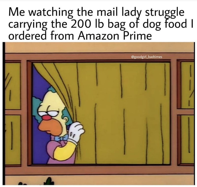 Meme - Cartoon - Me watching the mail lady struggle carrying the 200 lb bag of dog food I ordered from Amazon Prime @goodgirl_badtimes