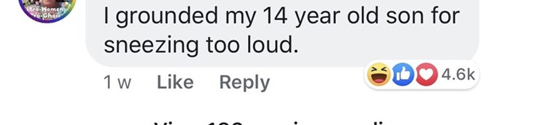 pmsing - Text - ro I grounded my 14 year old son for sneezing too loud. 4.6k Reply Like 1 w