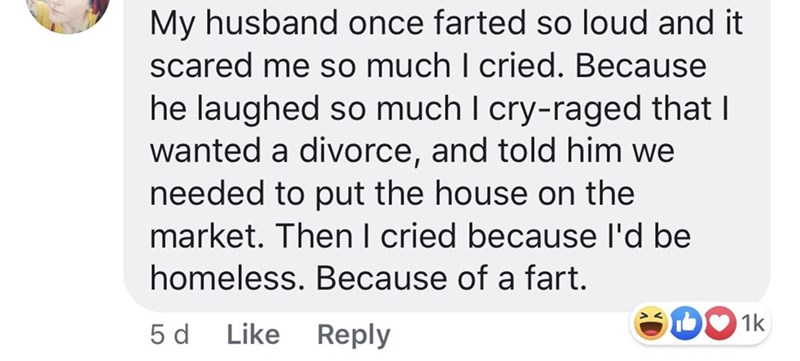 pmsing - Text - My husband once farted so loud and it scared me so much I cried. Because he laughed so much I cry-raged that I wanted a divorce, and told him we needed to put the house on the market. Then I cried because l'd be homeless. Because of a fart. D1k Like Reply 5 d