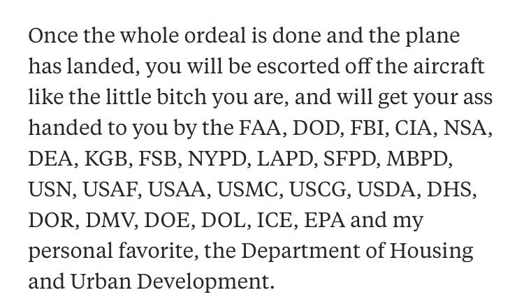 """Quora- """"Once the whole ordeal is done and the plane has landed, you will be escorted off the aircraft like the little bitch you are, and will get your handed to you by the FAA, DOD, FBI, CIA, NSA DEA, KGB, FSB, NYPD, LAPD, SFPD, MBPD, USN, USAF, USAA, USMC, USCG, USDA, DHS, DOR, DMV, DOE, DOL, ICE, EPA and my personal favorite, the Department of Housing and Urban Development"""""""