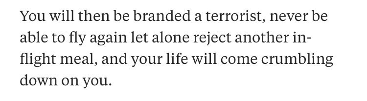 Text - You will then be branded a terrorist, never be able to fly again let alone reject another in- flight meal, and your life will come crumbling down on you
