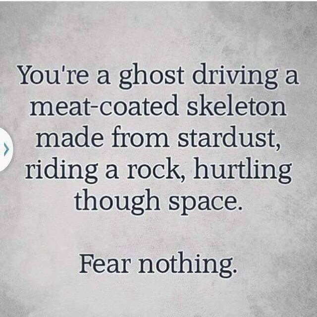 Meme - Text - You're a ghost driving a meat-coated skeleton made from stardust, riding a rock, hurtling though space. Fear nothing.
