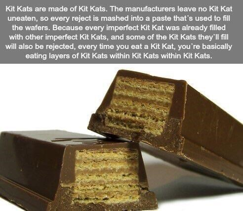 Meme - Food - Kit Kats are made of Kit Kats. The manufacturers leave no Kit Kat uneaten, so every reject is mashed into a paste that's used to fill the wafers. Because every imperfect Kit Kat was already filled with other imperfect Kit Kats, and some of the Kit Kats they'll fill will also be rejected, every time you eat a Kit Kat, you're basically eating layers of Kit Kats within Kit Kats within Kit Kats.