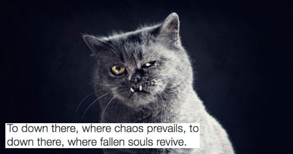 cats with dark metal lyrics