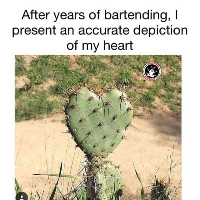 restaurant meme - Cactus - After years of bartending, I present an accurate depiction of my heart