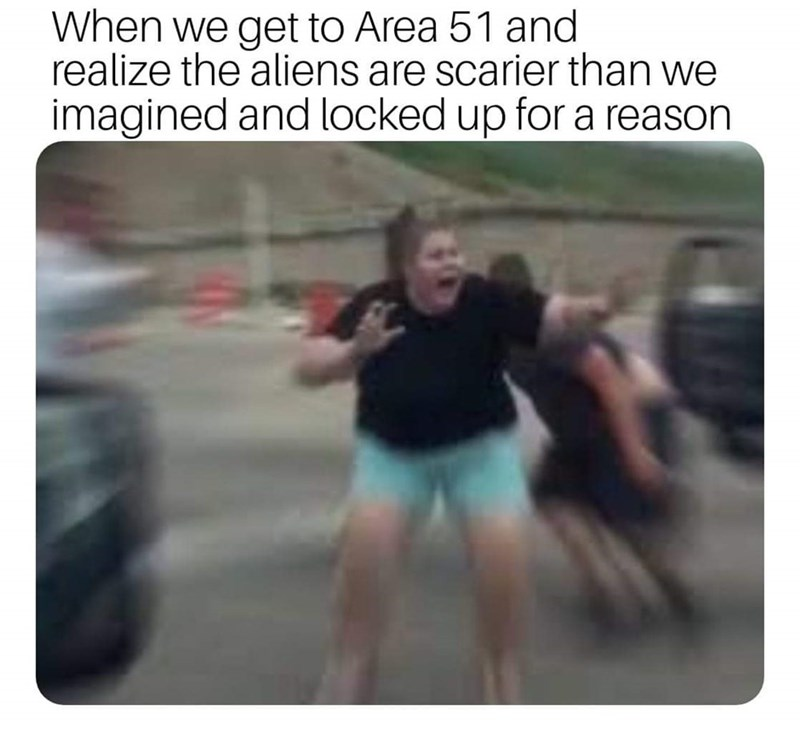 storm area 51 meme - Text - When we get to Area 51 and realize the aliens are scarier than we imagined and locked up for a reason