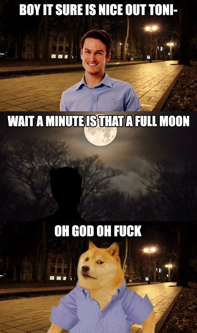 Meme - Movie - BOY IT SURE IS NICE OUT TONI WAIT A MINUTESTHAT A FULL MOON OH GOD OH FUCK mmri
