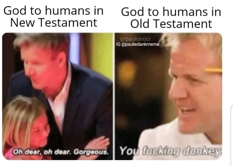 meme - Face - God to humans in New Testament God to humans in Old Testament u/paolonoci IG @pauliedankmeme You fucking donkey Oh dear, oh dear. Gorgeous.