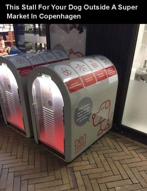 genius invention - Small appliance - This Stall For Your Dog Outside A Super Market In Copenhagen Autorata syes aom UE VUE dng Ar d l pdan m ner Den 0OGS OB