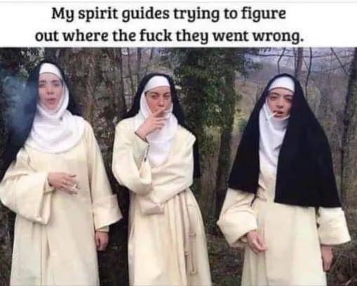Meme - Event - My spirit guides trying to figure out where the fuck they went wrong.