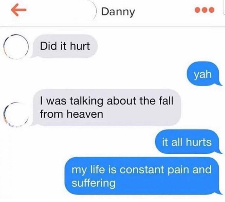 "Meme - ""Danny Did it hurt yah I was talking about the fall from heaven it all hurts my life is constant pain and suffering"""