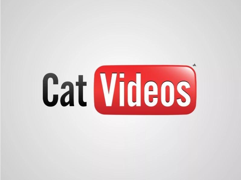 honest logo - Text - Cat Videos